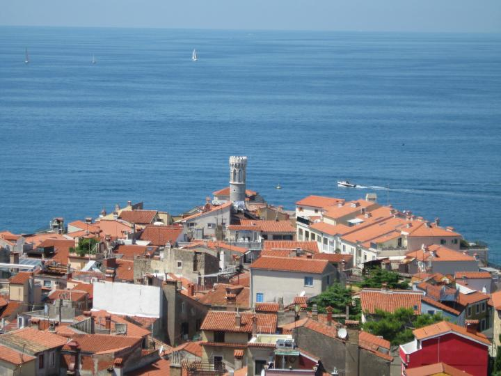 Piran's old town from above